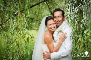 Bride and Groom Under Tree at Brooklands Farm Ontario